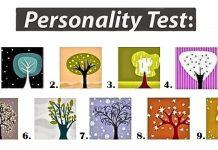 Εσύ ποιό δέντρο είσαι?