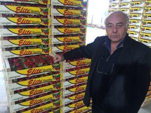 Εργασιακό και capital controls τροχοπέδη για τη φράουλα