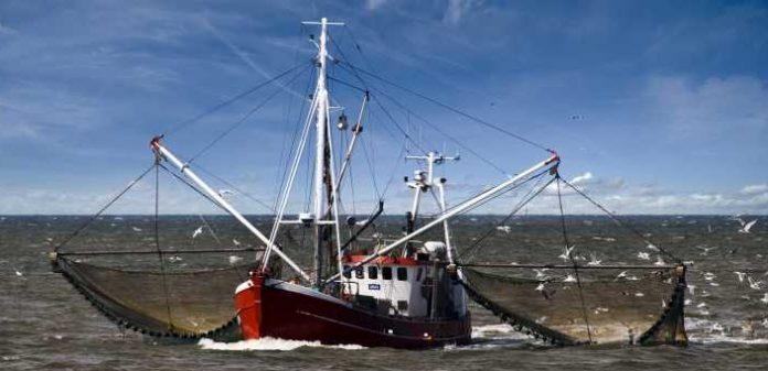 Η Κομισιόν υλοποιεί πρόγραμμα δράσης για τη βελτίωση της νομοθεσίας στην αλιεία