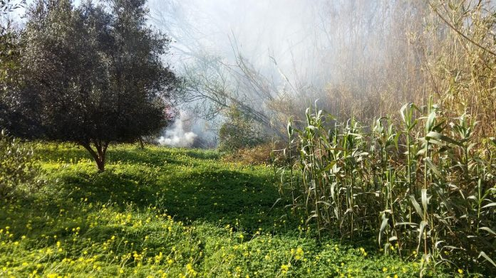 Μέσα σε 3 ημέρες 60 πυρκαγιές στην Ηλεία. Αιτία η καύση υπολειμμάτων γεωργικών καλλιεργειών