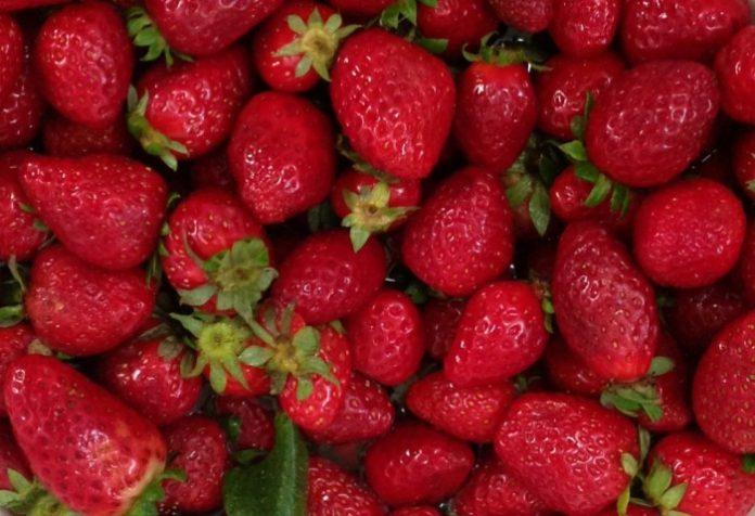 Δέσμευση οκτώ τόνων φρούτων χωρίς ταυτότητα