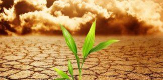 Το ΓΕΩΤΕΕ συμμετέχει σε ενημερώσεις για μελέτες σχετικές για την Κλιματική Αλλαγή