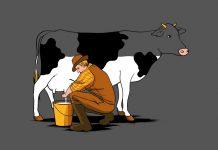 ΣΕΚ: Προτάσεις για βιώσιµη και ανταγωνιστική αγελαδοτροφία