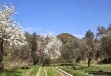 Κρήτη: Αγωνία για τα «παιχνίδια» του καιρού