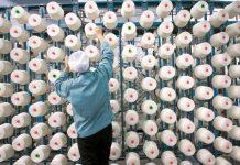 Ολοκληρωμένο σχέδιο για την κλωστοϋφαντουργία ζητούν οι επιχειρήσεις του κλάδου