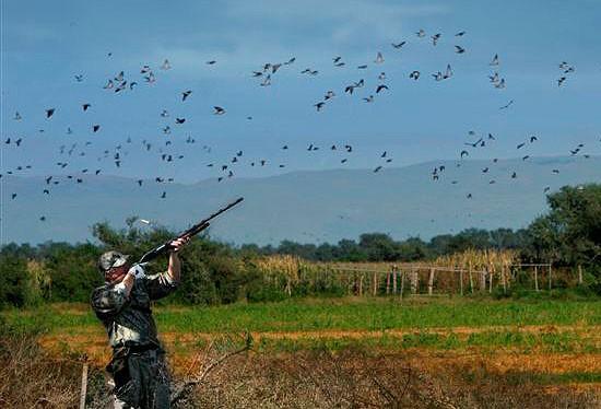 Αρχίζει στις 10 Μαρτίου ο Εθνικός Διάλογος για το κυνήγι
