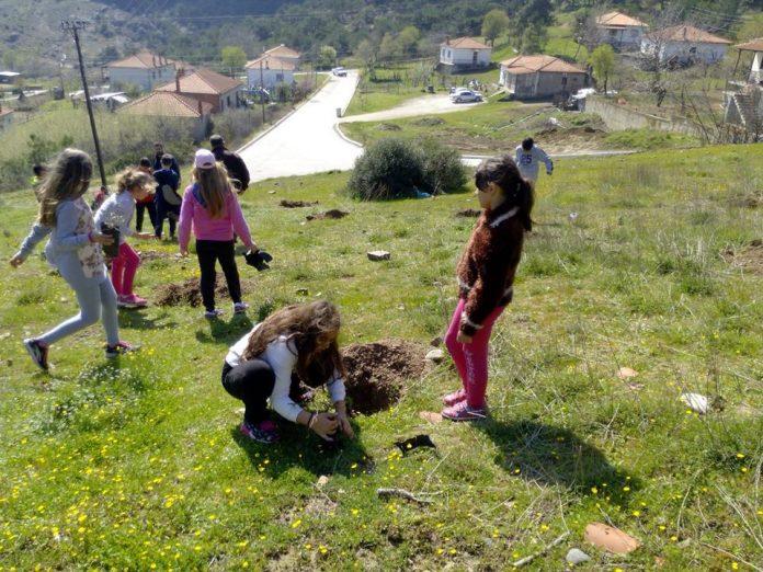 Σουφλί: Μαθητές Δημοτικού δημιουργούν το δικό τους δάσος