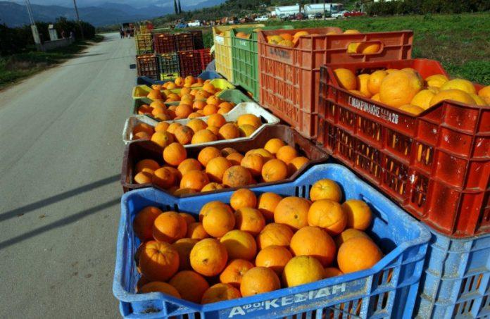 Θεσ/νίκη: Παραγωγοί και πωλητές λαϊκών αγορών στο πλευρό των προσφύγων