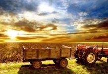 Στροφή στον ήλιο για τον αγροτικό τομέα