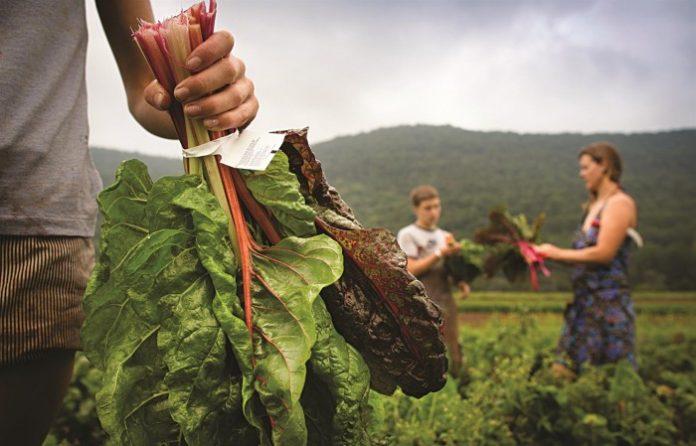 Και επίσημα η παράταση για την οριστικοποίηση των νέων αγροτών που προανείγγειλε η «ΥΧ»