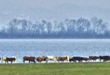 Αυτή τη παρασκευή με την «ΥΧ»: Μεγάλο αφιέρωμα στις Σέρρες