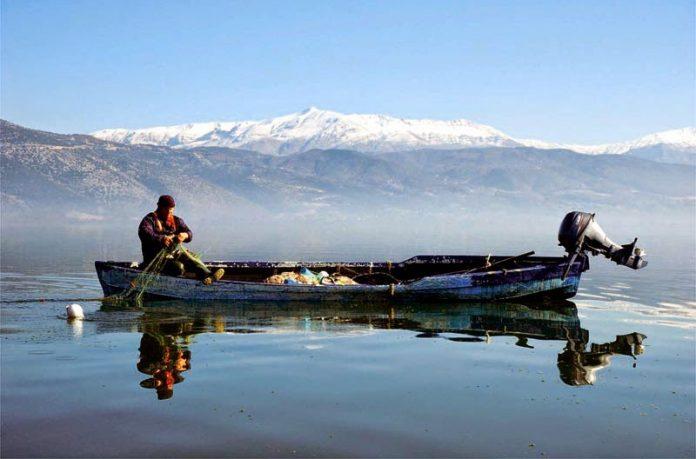 Τροπολογίες για τα σφαγεία και τους αλιευτικούς συνεταιρισμούς