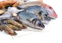 Δεσμεύσεις αλιευμάτων στην ιχθυόσκαλα Κερατσινίου