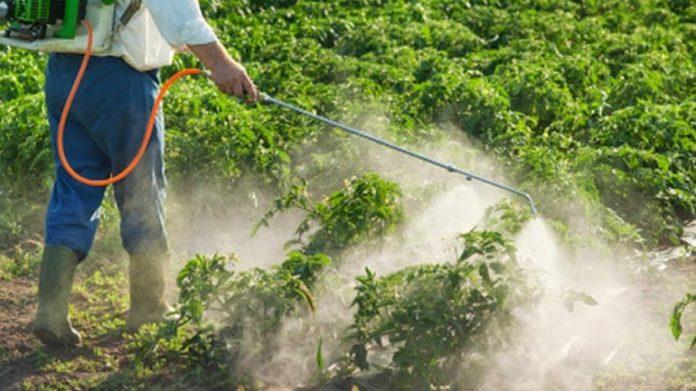 Δημοσιεύθηκε η Υπουργική Απόφαση για τις κατ' εξαίρεση άδειες διάθεσης φυτοπροστατευτικών προϊόντων