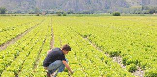 Ηράκλειο: Εσπερίδα για ανάδειξη του ρόλου του πρωτογενούς τομέα