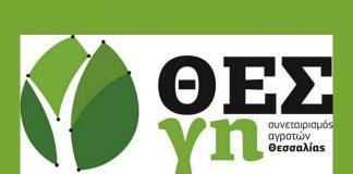 Τέσσερις Ομάδες Παραγωγών ιδρύει ο Συνεταιρισμός Αγροτών Θεσσαλίας ΘΕΣγη