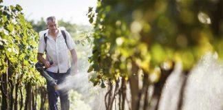 Πάρτυ με τα παράνομα φυτοπροστατευτικά στην Ορεστιάδα