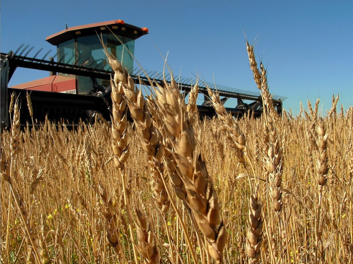 Μέσα από συμπληγάδες περνά το πλάνο για τη γεωργία