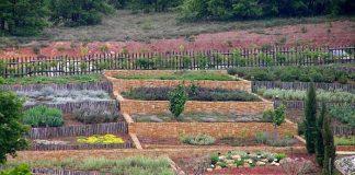 O Βοτανικός Κήπος Κρουσσίων στο Κικλίς