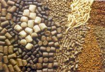 Πειραιάς: Απαγόρευση εισαγωγής 23 τόνων θειικού χαλκού για παρασκευή ζωοτροφών