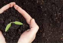 Η ανάπτυξη του αγροτικού τομέα περνάει από την Τράπεζα Πειραιώς