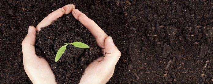Agrient O αγροτικός τομέας υπό πρίσμα... επιχειρηματικό