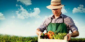 Δ. Ελλάδα: Επιχειρηματικότητα και καινοτομία στον αγροδιατροφικό τομέα