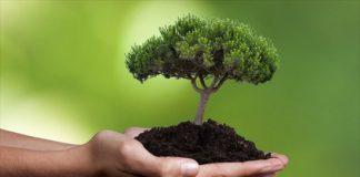 Η ΕΕ δέσμευσε κονδύλια ύψους 243 εκατ. ευρώ για έργα στον τομέα του περιβάλλοντος