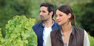 Πληρώθηκε η πρώτη δόση ύψους 27,5 εκ. ευρώ σε δικαιούχους του προγράμματος εγκατάστασης νέων γεωργών στην Περιφέρεια Κεντρικής Μακεδονίας