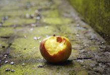 ΕΡΕΥΝΑ Τεράστιες οι απώλειες εισροών και φυσικών πόρων από τα απορρίμματα τροφίμων