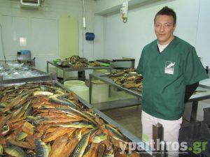 Νίκος Κυρυμκιρίδης, Deli-Fish Α.Ε.