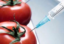 Σε νέα υπερδύναμη των ΓΤΟ μετατρέπεται η Κίνα