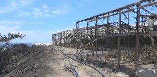 Ιεράπετρα: Παραγωγοί σε απόγνωση λόγω πυρκαγιάς