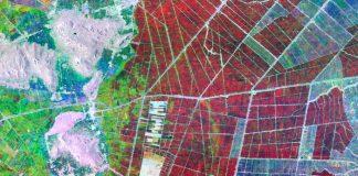 Καταγραφή των ζημιών στις καλλιέργειες με τη βοήθεια των δορυφόρων