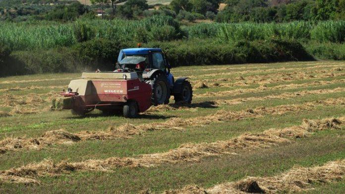 Μόνο για τους επαγγελματίες αγρότες το αφορολόγητο