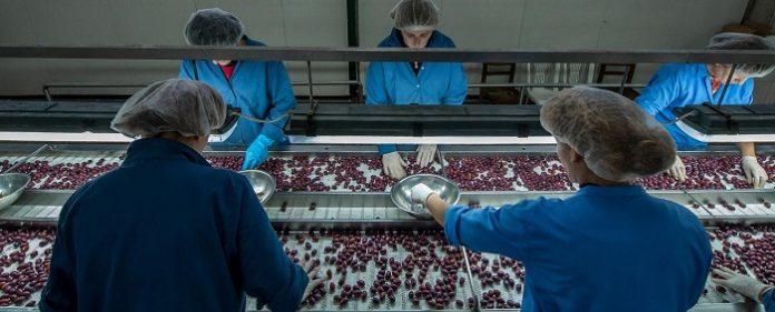 Ολύμπια - ΧΕΝΙΑ ΑΒΑΕ «Ταξιδεύει» τα ελληνικά προϊόντα σε ολόκληρο τον κόσμο