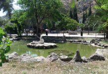 Παγκόσμια ημέρα Βιοποικιλότητας και Πάρκων στο Ναύπλιο