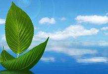 «Περιβαλλοντική Εκπαίδευση» στην υπηρεσία της αειφόρου ανάπτυξης
