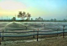Υποχρεώσεις δικαιούχων σημείων υδροληψίας που κάνουν αγροτική χρήση ύδατος
