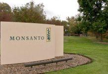 Δίνει 62 δισ. δολάρια για τη Monsanto η Bayer