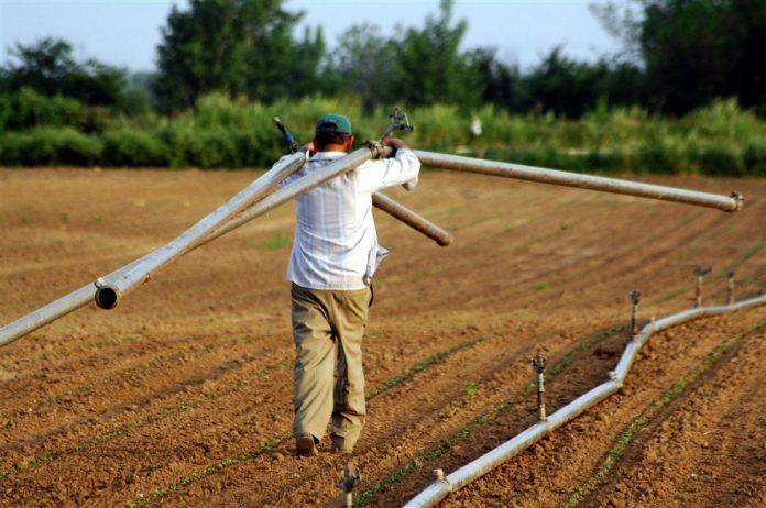 Στο φορολογητέο εισόδημα των αγροτών όλη η βασική ενίσχυση