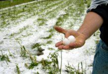 Τη συμπαράστασή του στους αγρότες της Αργολίδας που επλήγησαν από χαλαζοπτώσεις εκφράζει ο ΑΚΣΥΝΑ