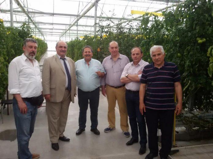 Ανασυγκρότηση του αγροδιατροφικού τομέα με νέο παραγωγικό πρότυπο