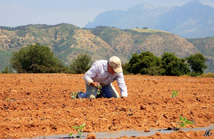 Στην Τρίπολη ο Β. Αποστόλου για διάλογο με τους αγρότες