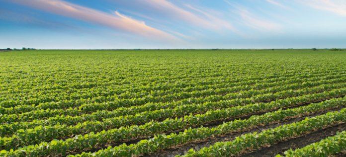 Demeter: Καινοτόμος πρόταση για την αειφόρο γεωργία στα πλαίσια του Horizon 2020