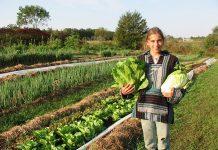Αυξημένη βιοποικιλότητα στις «πράσινες» καλλιέργειες