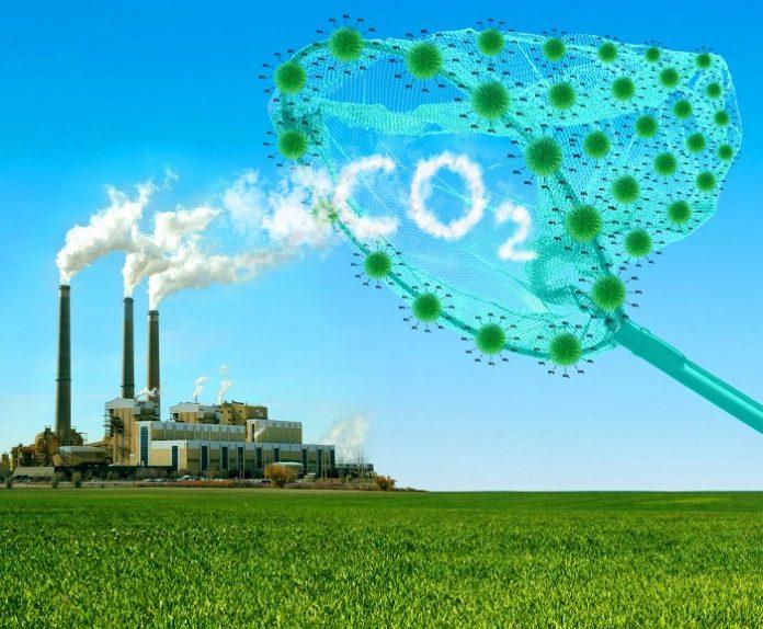 Δέσμευση του άνθρακα