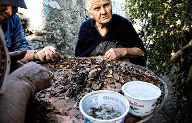 Εγκαίνια Μουσείου Μαστίχας: Ένα έργο πνοής για την Χίο