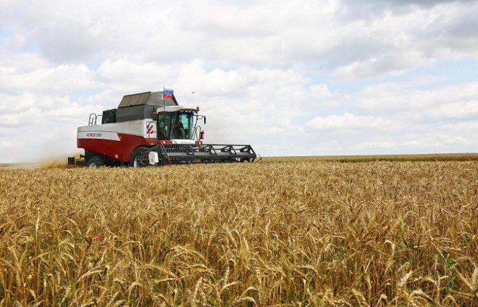 Η γεωργία φέρνει περισσότερα κέρδη στη Ρωσία από τα όπλα