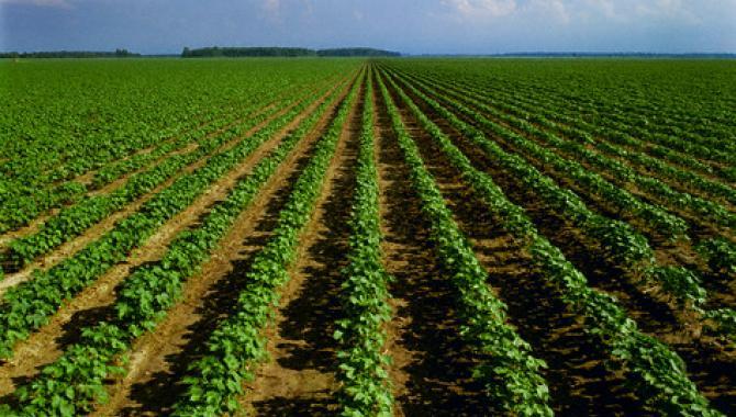 Οι Συντελεστές Τυπικής Απόδοσης για Νέους Αγρότες
